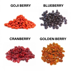 imagem Kit Berry Lovers (Blueberry + Cranberry + Goji + Golden)